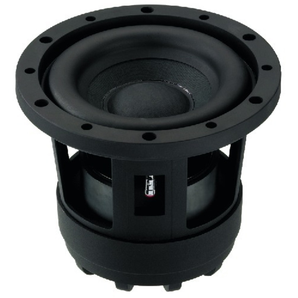RAPTOR-6 Subwoofer 300 Watt