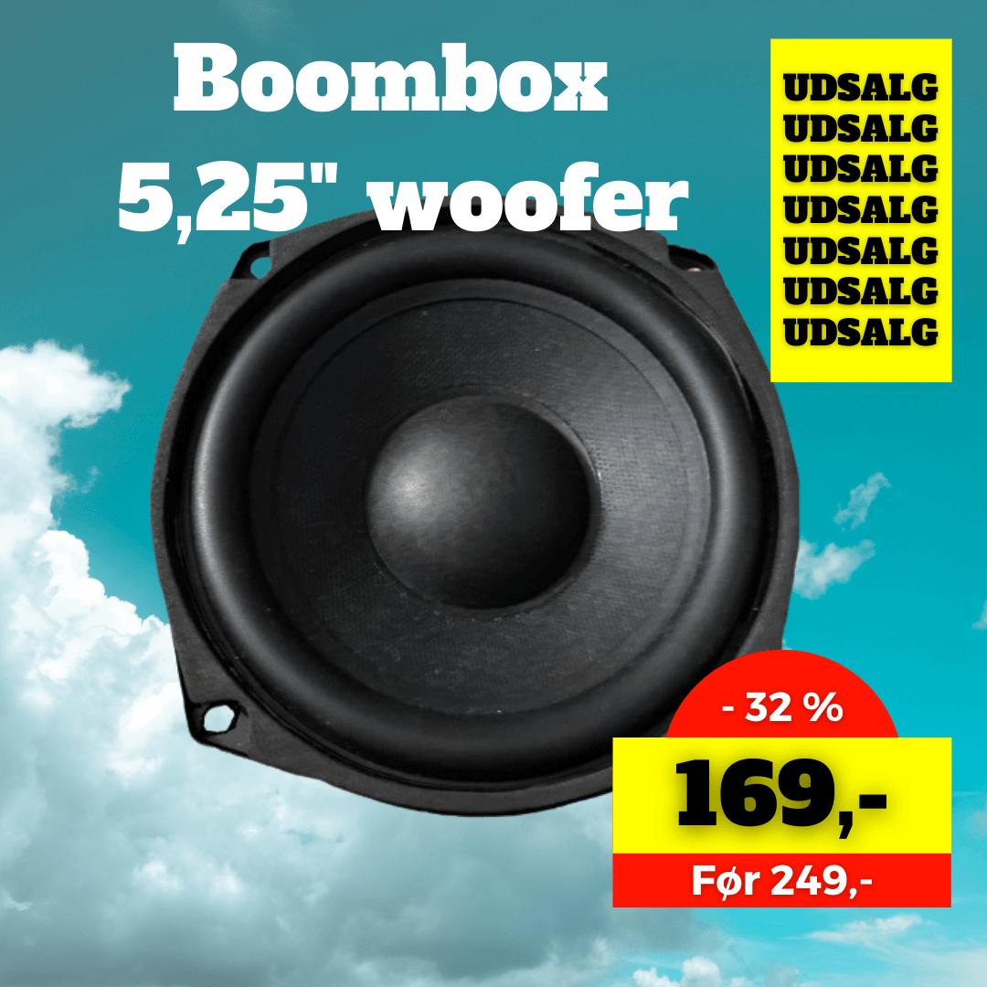 boombox woofer